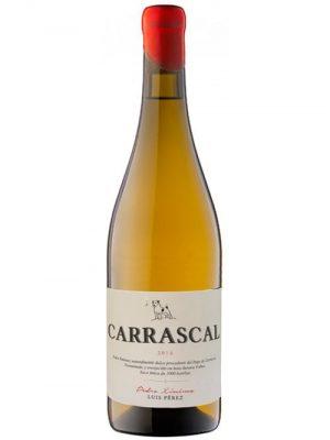 PX Carrascal 2014